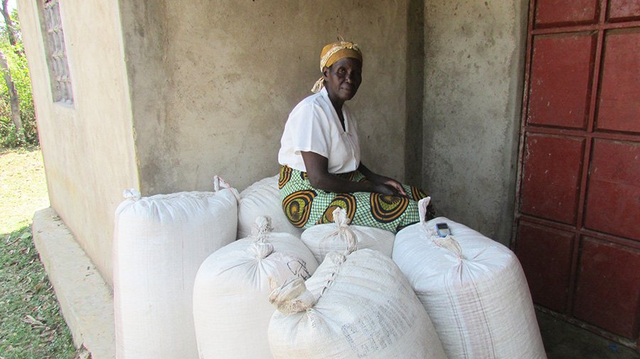 Eunice Matingi Marwa, a Nuru Kenya farmer, with her successful 2016 maize harvest