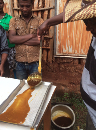 The Field Team learns about honey production through the Nuru pilot.