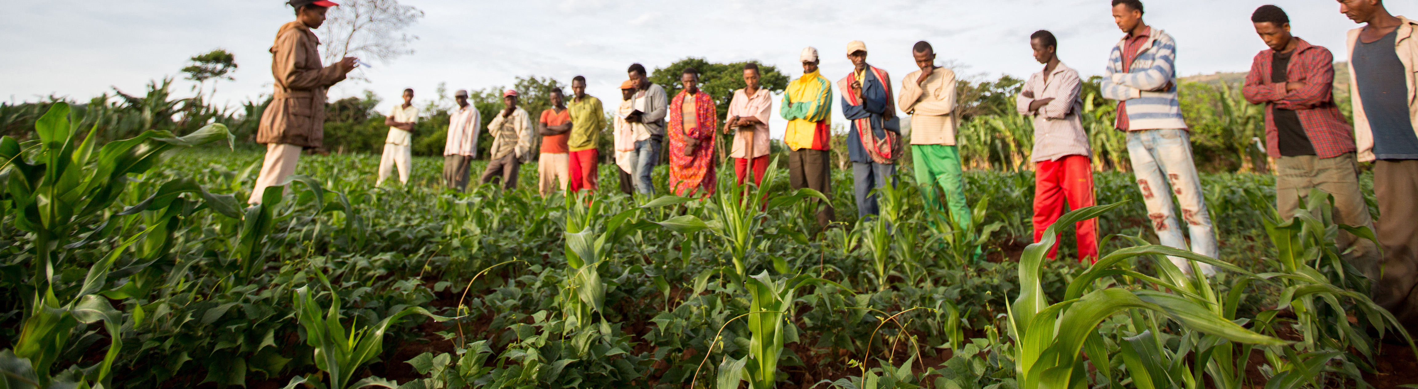 Nuru Partners to Build Sustainable Farmer Organizations
